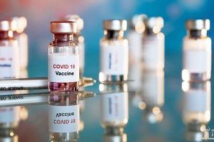 دو واکسن ایرانی کرونا در مرحله تولید