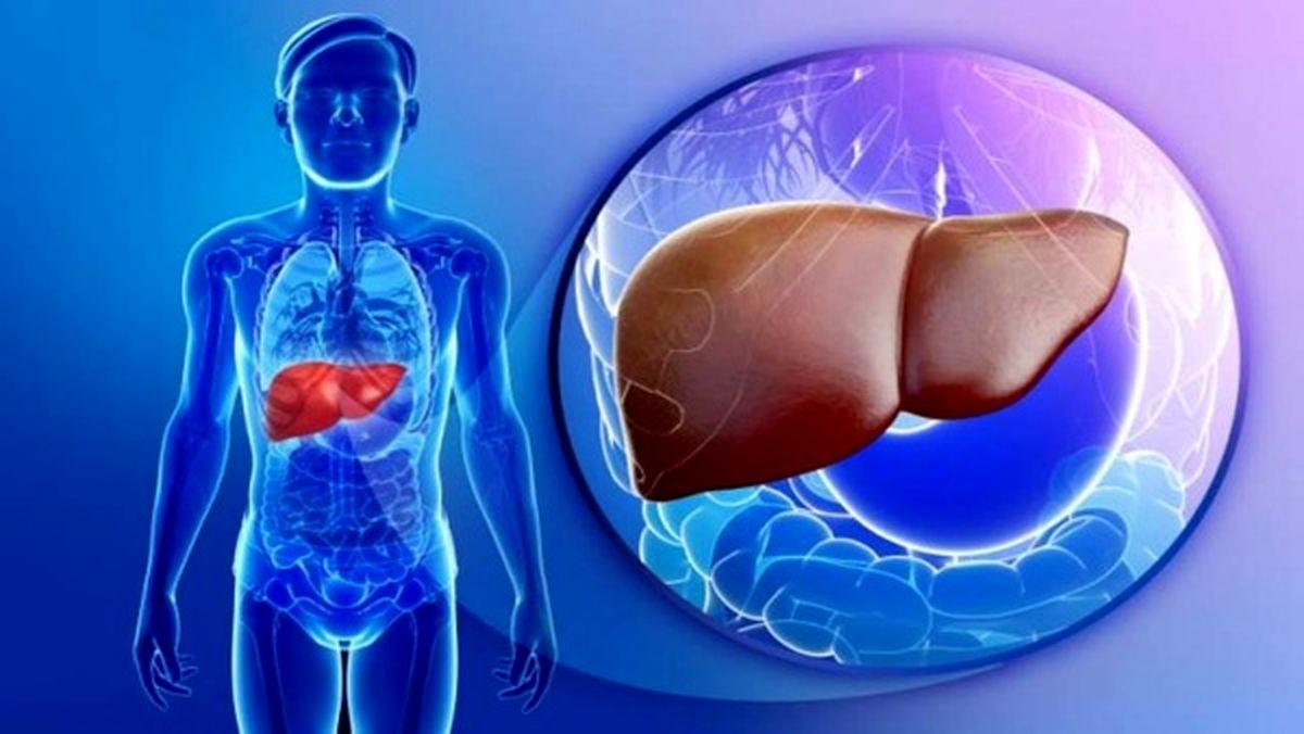 عواملی که باعث نابودی کبدتان می شود را بشناسید