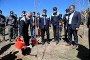 آیین کاشت نهال به مناسبت روز درختکاری در ذوب آهن اصفهان