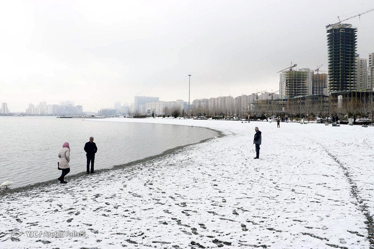 هشدار  بارش برف 15 سانتی متری درتهران یکشنبه 20 بهمن + عکس